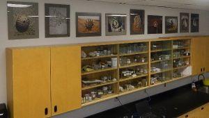 Marine life donation classroom1
