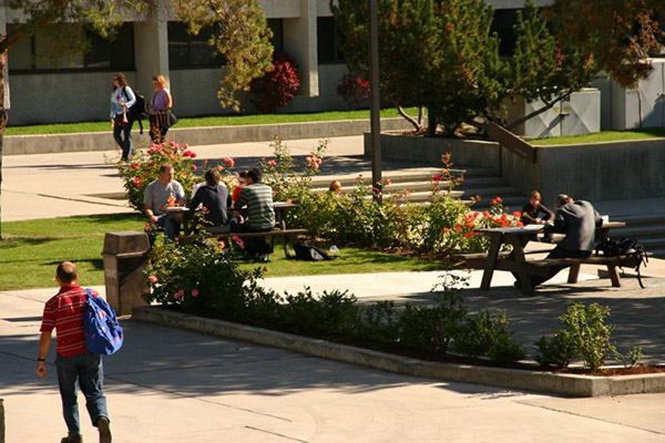 A group of students sitting on campus grounds